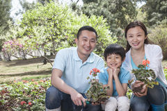 Portrait of family planting flowers. Royalty Free Stock Images