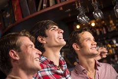 Portrait of the fans in the bar royalty free stock image