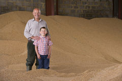 Portrait of farmer and grandson standing in wheat grain heap Royalty Free Stock Image