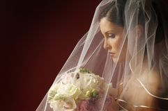 A portrait of a fashion bride Stock Photos