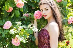 Portrait of fashion girl near pink roses Royalty Free Stock Photography