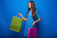 Portrait of fashion glamor stylish woman with shopping bags Royalty Free Stock Image