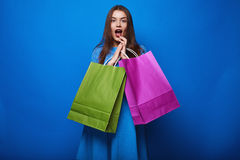 Portrait of fashion glamor stylish woman with shopping bags Stock Image