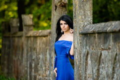 Portrait  Fashion Woman In Blue Dress Outdoor Stock Images