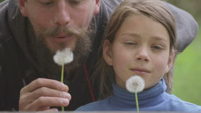 Portrait of a father and son with a flower dandelion. The bearded father playing with his son. The bearded man with a child blowing on a dandelion stock video