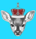 Portrait of Fawn with crown. Royalty Free Stock Photo