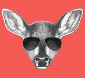 Portrait of Fawn with sunglasses. Stock Photography