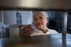 Female chef standing in the kitchen. Portrait of female chef standing in the kitchen stock image
