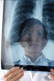 Portrait of a Female Doctor looking at an X-Ray. Royalty Free Stock Photography