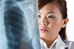 Portrait of a Female Doctor looking at an X-Ray. Stock Images