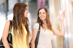 Portrait of female friends shopping together Royalty Free Stock Images