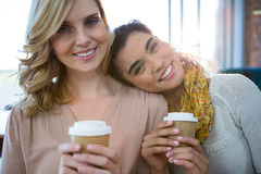 Portrait of female friends sitting together and having coffee. Portrait of smiling female friends sitting together and having coffee in cafeteria Royalty Free Stock Images