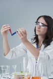 Portrait of Female Laboratory Staff with Two Flasks Samples. Royalty Free Stock Photo