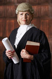 Portrait Of Female Lawyer In Court Holding Brief And Book. Female Lawyer In Court Holding Brief And Book stock photos