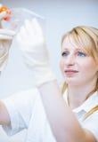 Portrait of a female researcher Stock Photo