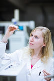 Portrait of a female researcher/chemistry student Stock Image
