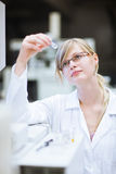 Portrait of a female researcher/chemistry student Stock Photos