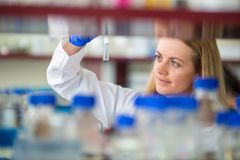Portrait of a female researcher doing research in a lab. Shallow DOF; color toned image Royalty Free Stock Images