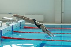 Portrait of a female swimmer, that jumping and diving into indoor sport swimming pool. Sporty woman Royalty Free Stock Image