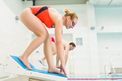 Portrait of a female swimmer, that ready to jump into sport swimming pool. Sporty woman.  Royalty Free Stock Photo