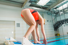 Portrait of a female swimmer, that ready to jump into sport swimming pool. Sporty woman.  Stock Photo