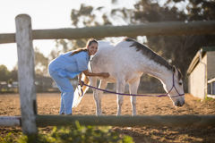 Portrait of female veterinarian examining horse. While standing on field royalty free stock photos