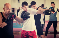 Portrait of females and males training in boxing gloves royalty free stock images