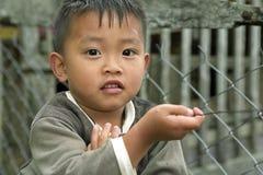 Portrait of Filipino Boy Royalty Free Stock Photo