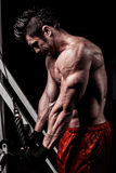 Portrait of a fit lean young man exercising in a gym. Stock Photography
