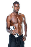 Portrait of a fit shirtless young man lifting dumbbell Stock Image