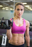 Portrait of fit woman exercising with dumbbell in gym Royalty Free Stock Photos