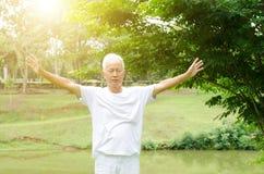 Senior man practicing martial arts in the park Royalty Free Stock Photos
