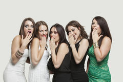 Portrait of five shocked young women with hands over mouth against gray background Stock Image