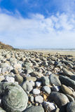 Portrait format wide angle pebble beach and blue sky Royalty Free Stock Image