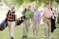 Portrait Of Four Friends Enjoying A Game Golf Stock Image