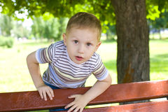 Portrait of the four-year-old boy. Portrait of active four-year-old child, playing in the summer in park Stock Photo