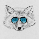 Portrait of fox drawn by hand in pencil in sunglasses Royalty Free Stock Photography
