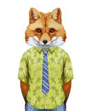 Portrait of Fox in  summer shirt with tie. Royalty Free Stock Images