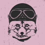 Portrait of Fox with Vintage Helmet. Royalty Free Stock Photos