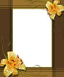 Portrait frame with lily collage. Portrait frame with lily on white, collage stock illustration