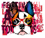 Portrait of french bulldog wearing sunglasses Royalty Free Stock Photo
