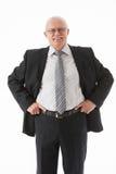 Portrait of a friendly mature basinessman Stock Photography