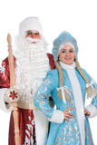 Portrait of a frightened Snow Maiden Stock Images