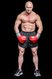 Portrait full length of bald boxer flexing muscles. Against black background royalty free stock photography