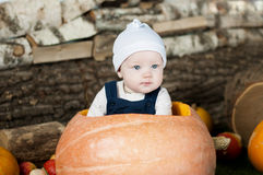 Portrait of funny baby in big  pumpkin. Stock Photography