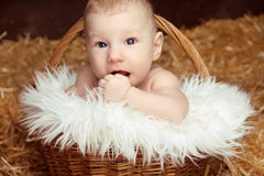 Portrait of funny baby in woven basket on pile of straw backgrou Stock Photography