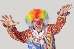 Portrait of funny clown with arms raised and mouth open against colored background Stock Images