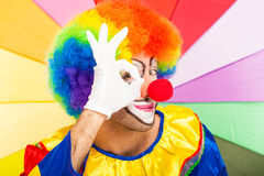 Portrait of a funny clown Royalty Free Stock Image