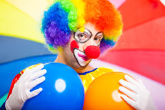 Portrait of a funny clown Royalty Free Stock Photos