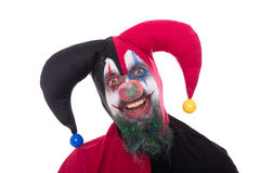 Portrait of a funny jester, isolated on white Royalty Free Stock Photo